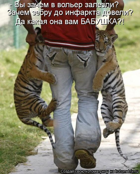 Название: kotomatritsa_mlI.jpg Просмотров: 705  Размер: 71.6 Кб