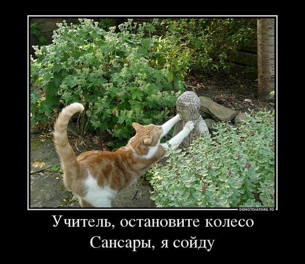 Название: koshka.jpg Просмотров: 359  Размер: 91.4 Кб