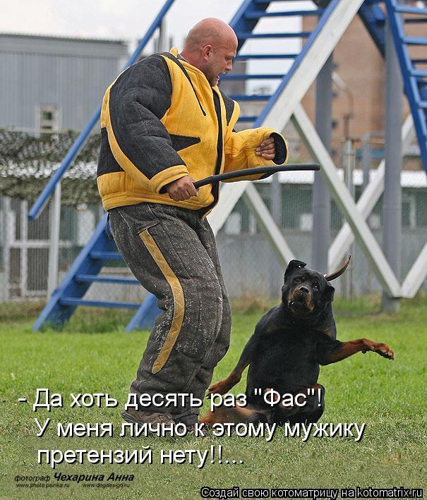 Название: kotomatritsa_Xa.jpg Просмотров: 721  Размер: 101.2 Кб