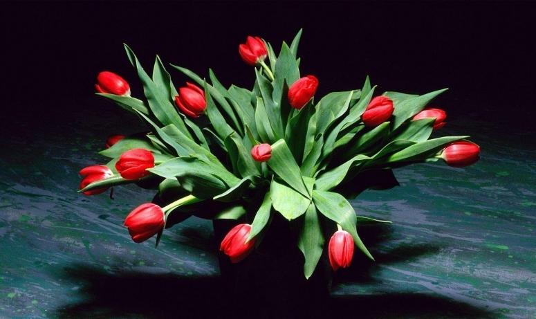 Название: 1236457058_international_womens_day_a_bouquet_to_women_on_mar(1).jpg Просмотров: 96  Размер: 265.6 Кб