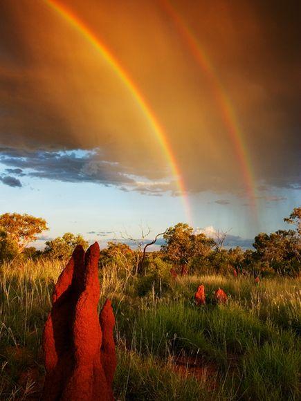 Название: double-rainbow-olson_1565_600x450.jpg Просмотров: 59  Размер: 40.6 Кб