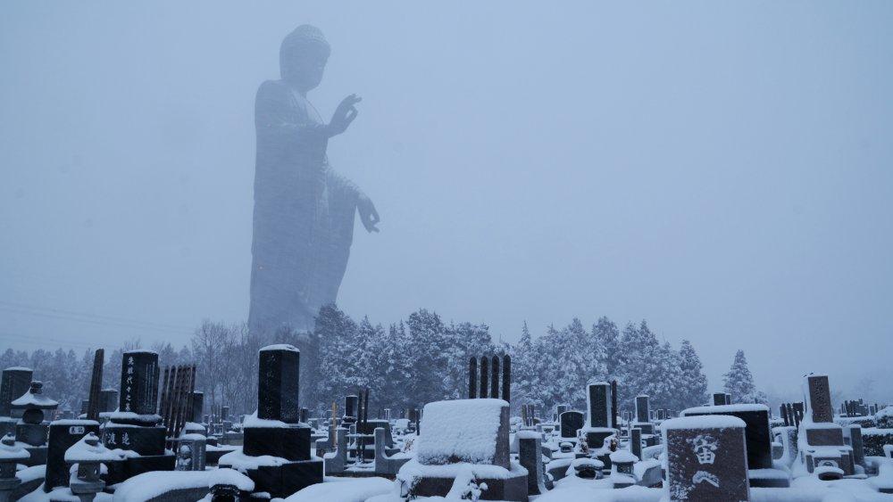 Название: Buddha and cemetery.jpg Просмотров: 303  Размер: 63.6 Кб